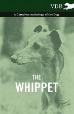 Whippet - A Complete Anthology of the Dog