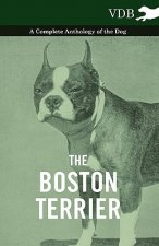 Boston Terrier - A Complete Anthology of the Dog -