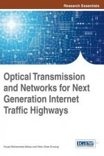 Optical Transmission and Networks for Next Generation Internet Traffic Highways