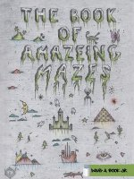 Book of Amazeing Mazes