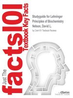 Studyguide for Lehninger Principles of Biochemistry by Nelson, David L., ISBN 9781429234146