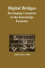 Digital Bridges: Developing Countries in the Knowledge Economy