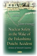 Nuclear Safety in the Wake of the Fukushima Daiichi Accident