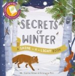 Secrets of Winter: Hold the Page to the Light to See Inside Hidden Habitats