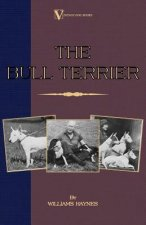 Bull Terrier (A Vintage Dog Books Breed Classic)