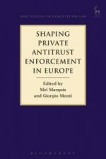 Shaping Private Antitrust Enforcement in Europe