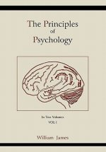 Principles of Psychology (Vol 1)