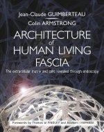 Architecture of Living Fascia
