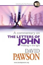Commentary on the Letters of John