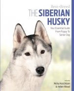 Siberian Husky Best of Breed