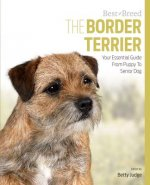 Border Terrier Best of Breed