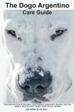 Dogo Argentino Care Guide. Dogo Argentino Facts & Information