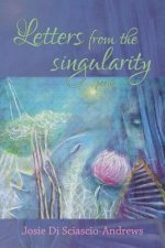 Letters from the Singularity