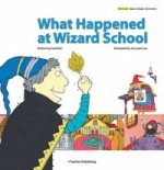 What Happened at Wizard School