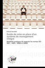 Guide de Mise En Place D'Un Systeme de Management Integre