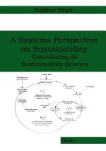 Systems Perspective on Sustainability