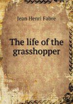 Life of the Grasshopper