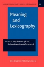 Meaning and Lexicography