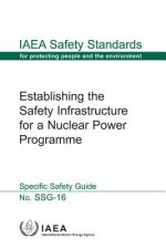 Establishing the Safety Infrastructure for a Nuclear Power Programme