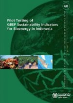 Pilot Testing of GBEP Sustainability Indicators for Bioenergy in Indonesia