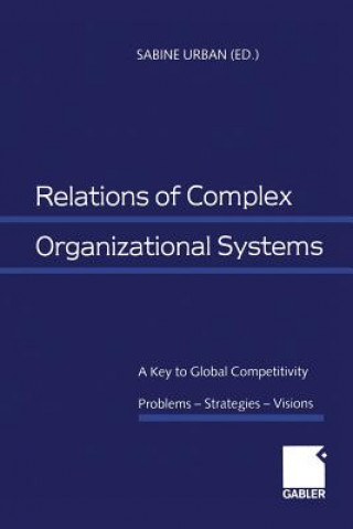 Relations of Complex Organizational Systems