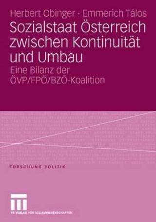 Sozialstaat OEsterreich Zwischen Kontinuitat Und Umbau