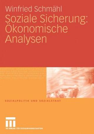 Soziale Sicherung:  konomische Analysen