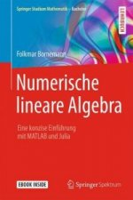 Springer Studium Mathematik - Bachelor