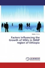 Factors Influencing the Growth of MSEs in SNNP region of Ethiopia