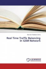 Real Time Traffic Balancing in GSM Network
