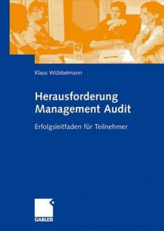 Herausforderung Management Audit