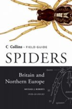 Spiders of Britain and Northern Europe