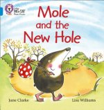 Mole and the New Hole