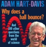 Why Does A Ball Bounce?