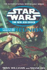 Star Wars: The New Jedi Order - Force Heretic - Reunion