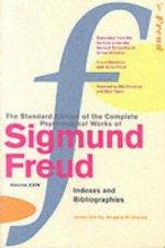 Complete Psychological Works Of Sigmund Freud, The Vol 24