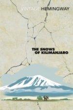 Snows Of Kilimanjaro