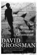 Book of Intimate Grammar