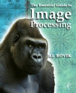 Essential Guide to Image Processing