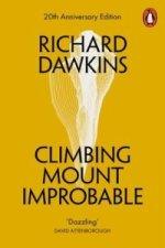 Climbing Mount Improbable