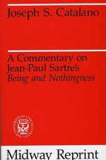 Commentary on Jean-Paul Sartre's Being and Nothingness