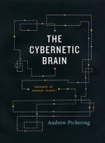 Cybernetic Brain