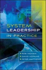 System Leadership in Practice