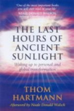 Last Hours Of Ancient Sunlight