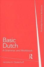 Basic Dutch: A Grammar and Workbook