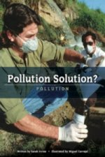 Pollution Solution? Pollution