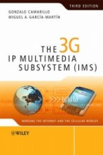 3G IP Multimedia Subsystem (IMS)