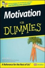 Motivation For Dummies