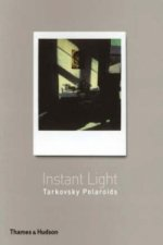 Instant Light  Tarkovsky Polaroids