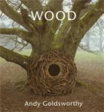 Wood: Andy Goldsworthy